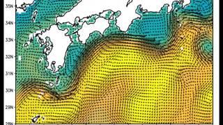 2015年の流速と海面高度