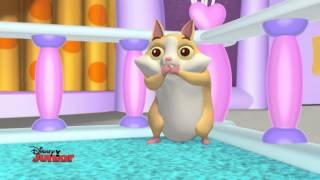 Minnie Toons -- Il giorno delle adozioni - Dall'episodio 28