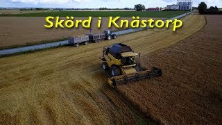 Skörden i Skåne här i Knästorp