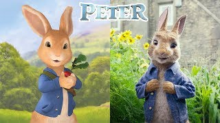 Peter Rabbit Characters In Real Life | All Characters 2017