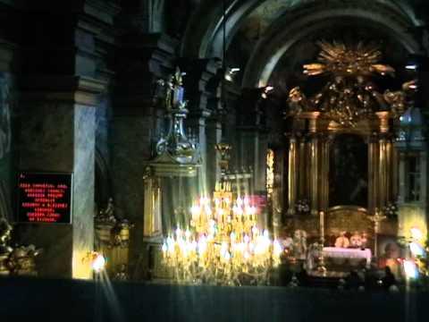 Dziś Chrystus, Król wiecznej chwały / Katedra Kielecka