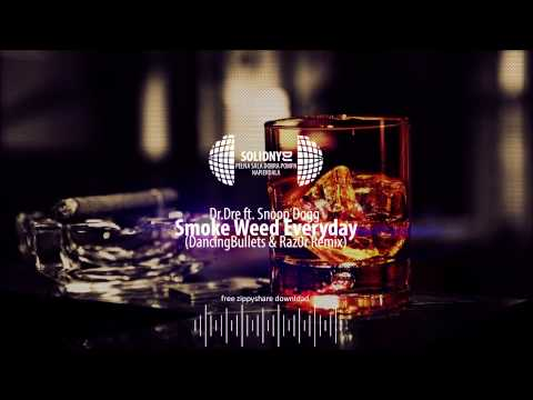 Dr.Dre ft. Snoop Dogg - Smoke Weed Everyday (DancingBullets & Raz0r Remix) [DOWNLOAD-ZIPPY]