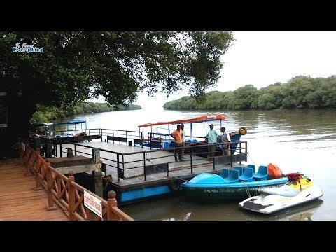 Mada Forest Boating | Coringa Wildlife Sanctuary | Mada Forest Korangi