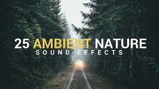 AMBIENT NATURE Sound Effects