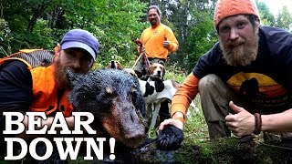 Catch and Cook BLACK BEAR using DOGS in SURVIVAL CHALLENGE! Ep3