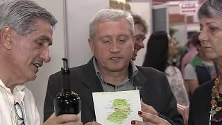 Videira sedia VI Mostra do Vinho Catarinense