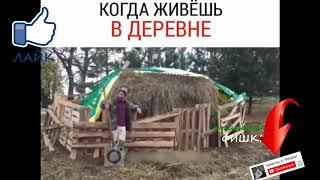 деспасито по русски