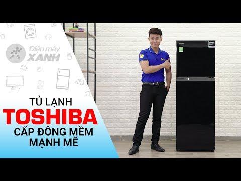 Tủ Lạnh Toshiba Inverter 226 Lít: Cấp đông Nhanh (GR-M28VHBZUKG) • Điện Máy XANH