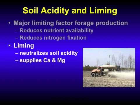 Principles of Profitable Ruminant Livestock Production
