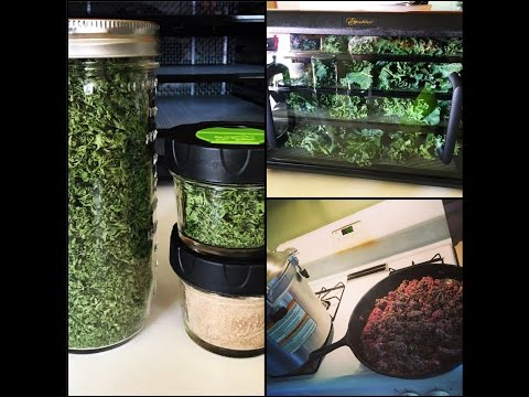 Canning Ground Beef and Dehydrating Organic Kale & Parsley