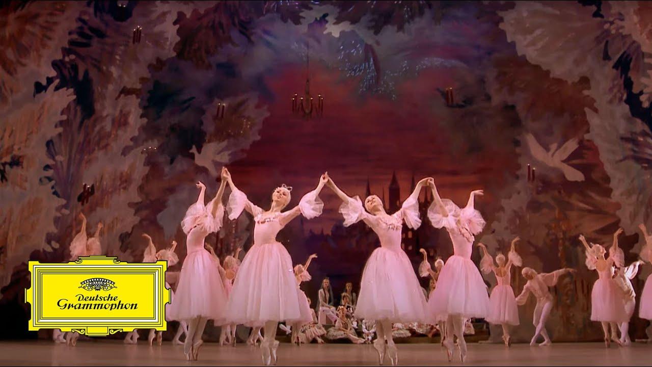 Mariinsky Orchestra & Valery Gergiev – Tchaikovsky: The Nutcracker 'Valse des Fleurs' (excerpt)