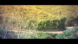 Camino de Santiago de Compostela: La historia de Sofonías  | EL TIEMPO
