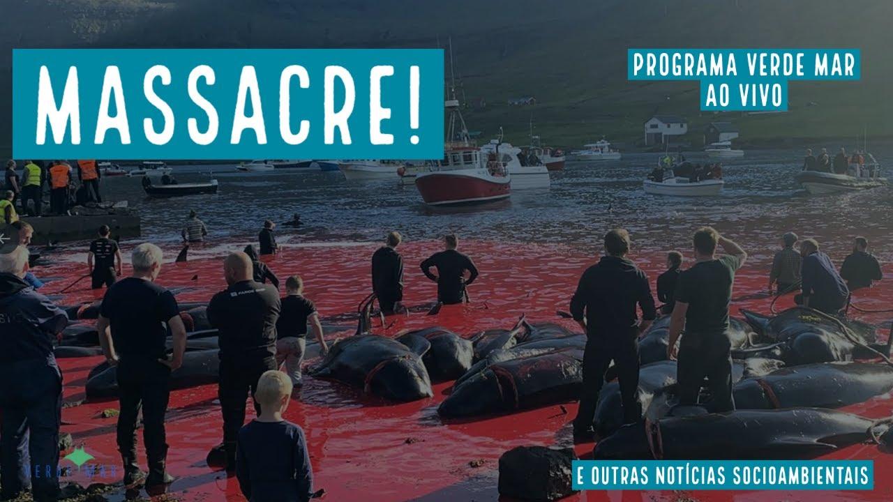 Massacre de baleias nas Ilhas Faroe