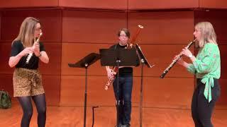 Brushstrokes for flute, oboe, and bassoon, I. Monet (Alyssa Morris)