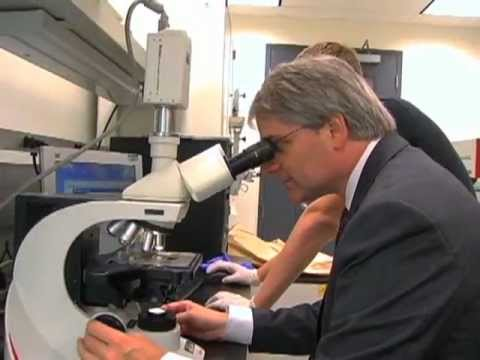 Dr. Alman DTRF Presentation  2009