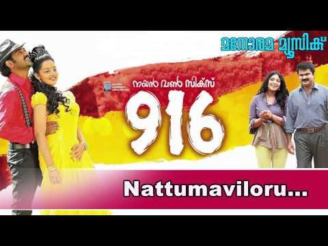 Naattumaviloru maina | 916