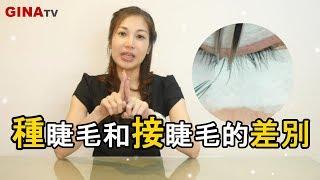 GinaTV ❤接睫毛和種睫毛一樣嗎?【睫毛知識家】客戶Qu0026A
