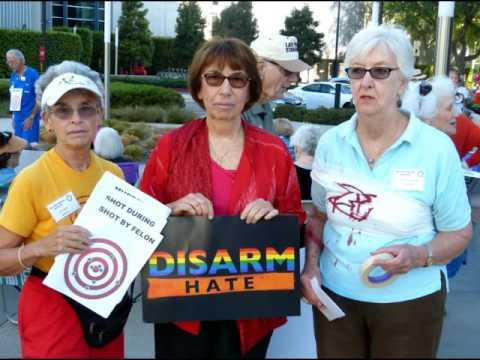 Laguna Woods Concerned Citizens Gun Legislation demonstration