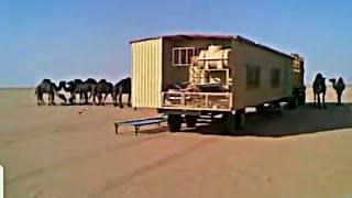 نمـــه روووعه في السعوديه