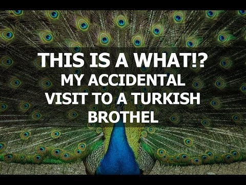 I thought a Turkish brothel was a regular bar