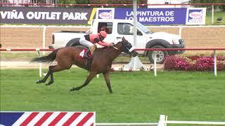 Vidéo de la course PMU PREMIO HUGO P. BOURCHIER