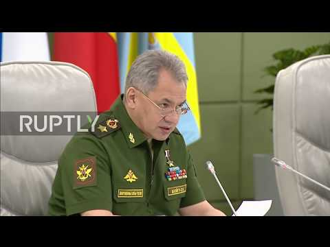 Russia: Coalition 'provocations' lead to expansion of terrorist activities in Syria – Shoigu