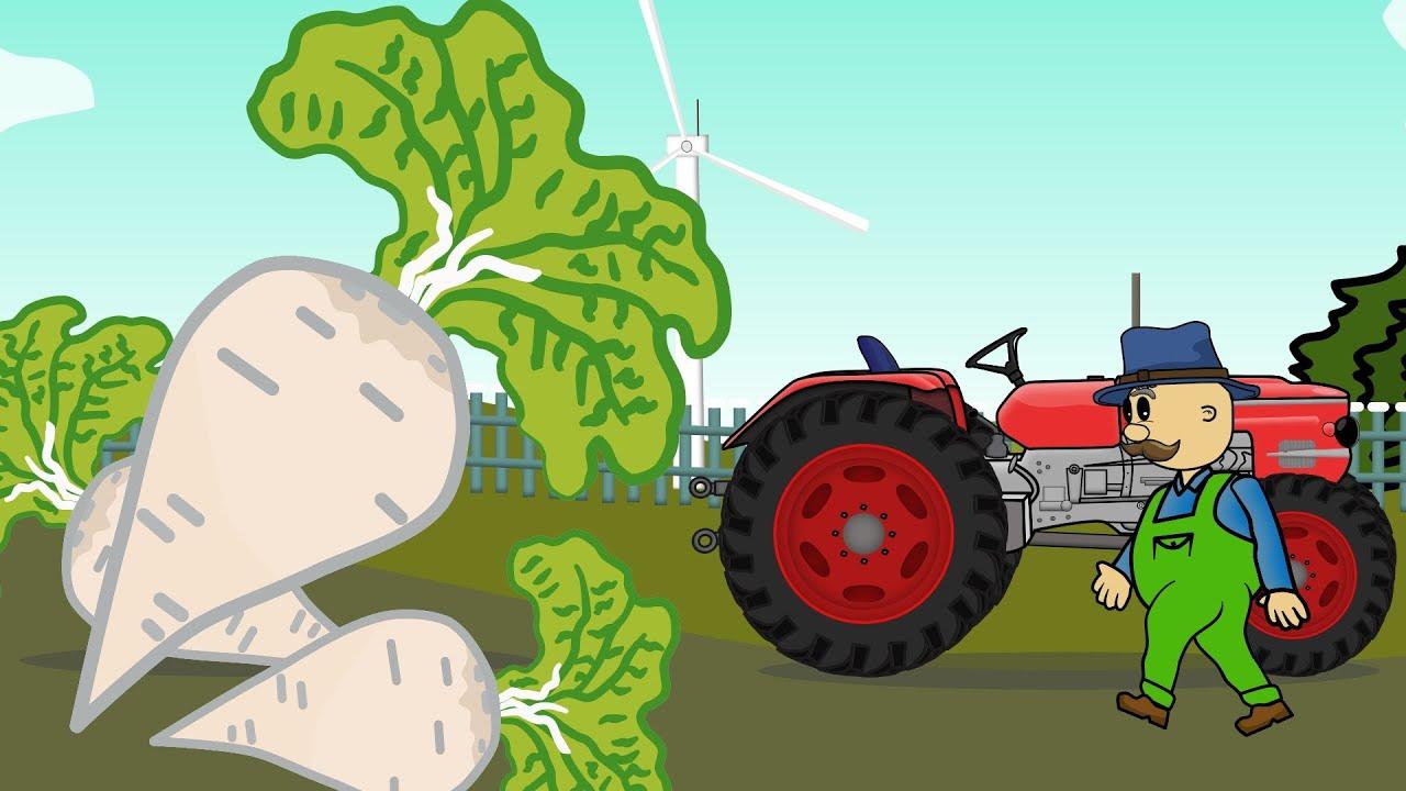 Farm Works - Farmer | Sugar Beet | Bajki Traktory - Rolnik i  Wyprawa do cukrowni