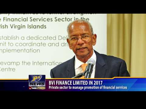 BVI FINANCE LIMITED IN 2017