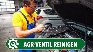 AGR-Ventil reinigen statt tauschen | Die Autodoktoren