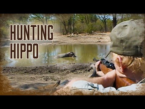 How To Hunt Hippo | 2