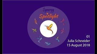 Synergy Spotlight 01
