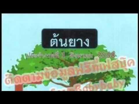 หวยซองต้นยาง งวดวันที่ 1/08/58