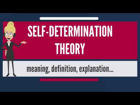 What is SELF-DETERMINATION THEORY? What does SELF-DETERMINATION THEORY mean?