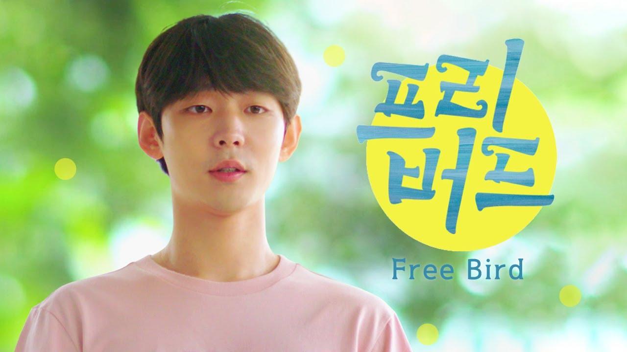 高麗草食男最出乎意料的真情告白,韓國男同志短片《自由鳥》想愛就趁現在!