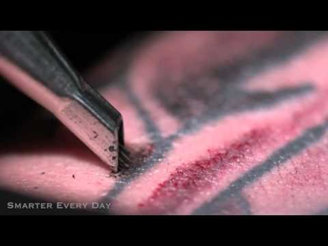 Slow motion tattoo needle youtube for How to make a tattoo needle