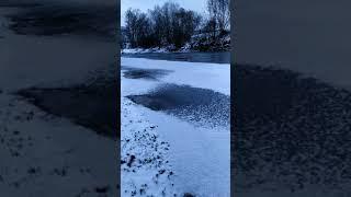 Звук зимнего ручья... Крещенские морозы. Очень красивое видео о зиме. Winter. Frost. #Shorts