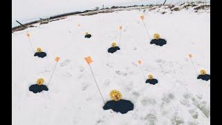 Весенний ЖОР щуки на ЖЕРЛИЦЫ Щука ВЫРЫВАЕТ живцов прямо ИЗ РУК Вот такой ПОСЛЕДНИЙ лёд Щучий ЖОР