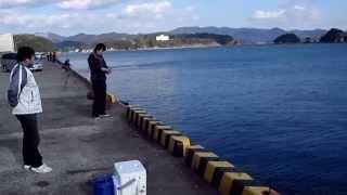 説明 2014.3.20~21 会社の釣り仲間と高知県宿毛市にイカ釣りに行ってき...