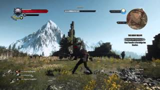 UPDATE The Witcher 3 Blood and Wine!!!!!!