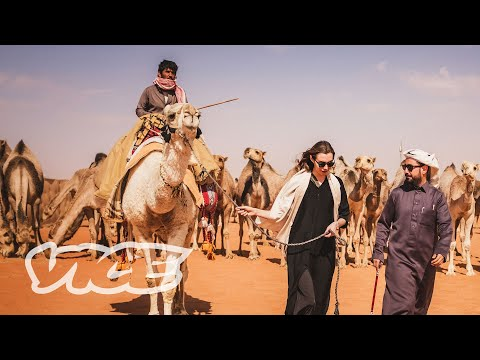 Respecting The Camels