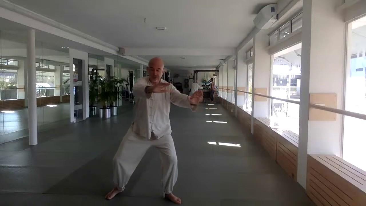 Tai Ji/ Qi Gong 18 Formen Teil 1 und Teil 2 mit Jon Carl Tall
