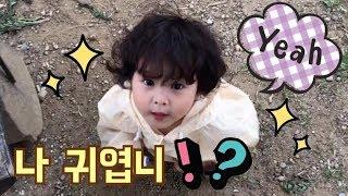 파마머리 아기의 눈빛...이게 진정한 귀여움이다!!!