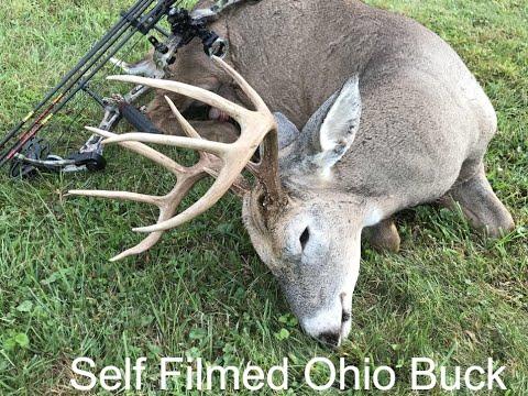 130'' Buck Killed During Early Season Bow Hunt (Self Filmed 2019)