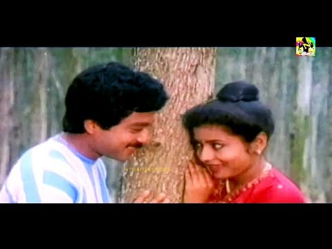 நான் தேடும் செவ்வந்தி HQ || Naan Thedum Sevanthi Songs || Ilayaraja & Chitra Songs || Ilayaraja Hits