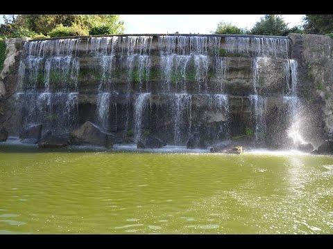 Giardino Delle Cascate Roma.Giardino Delle Cascate Eur Roma Youtube