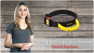 Nylon Dog Collar With Handle And Quick Release Buckle - Review