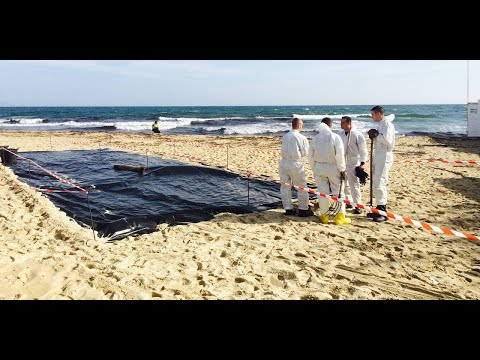 Le nettoyage des plages polluées du Var a démarré