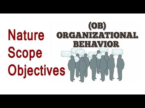 Organisational Behavior Nature And Scope Hindi