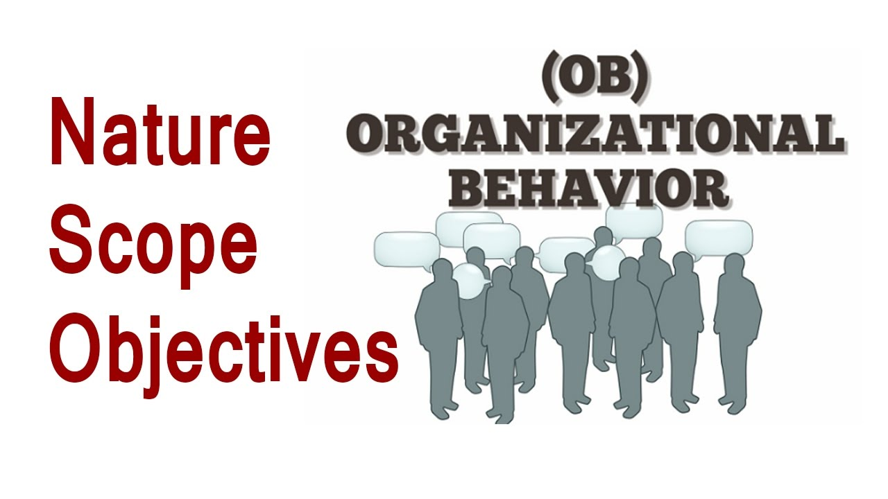 organization behavoir Managerial and organizational behavior helps create an understanding of how people skills needed to navigate the challenges presented by a complex organization.