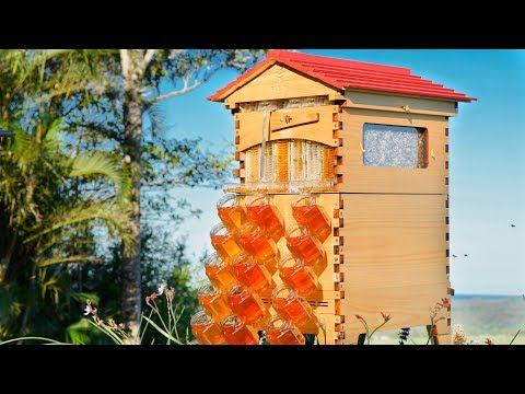 Flow Hive 2 now in Araucaria! Coming 22/11/2018